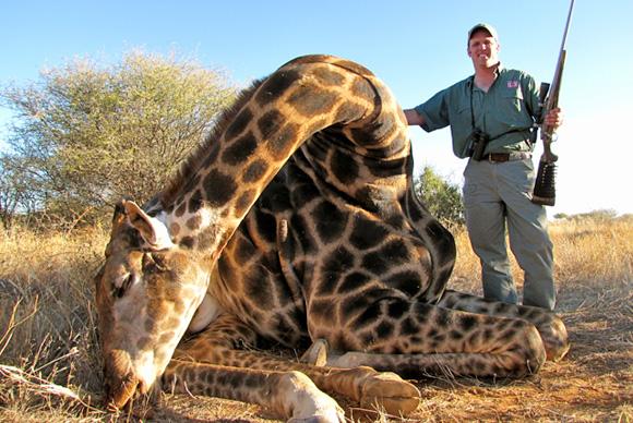 omujeve_hunting_safaris_namibia_giraffe