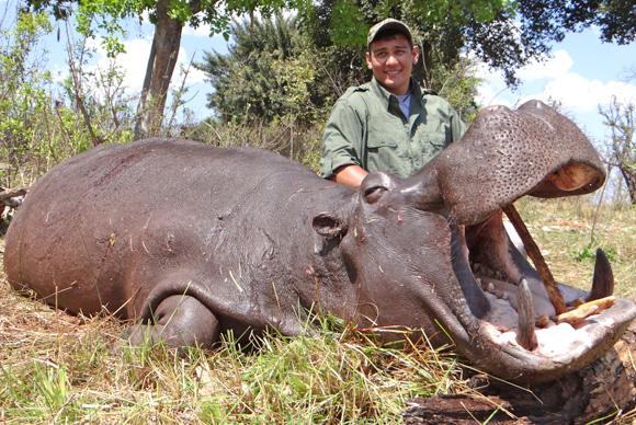 omujeve_hunting_safaris_namibia_hippo
