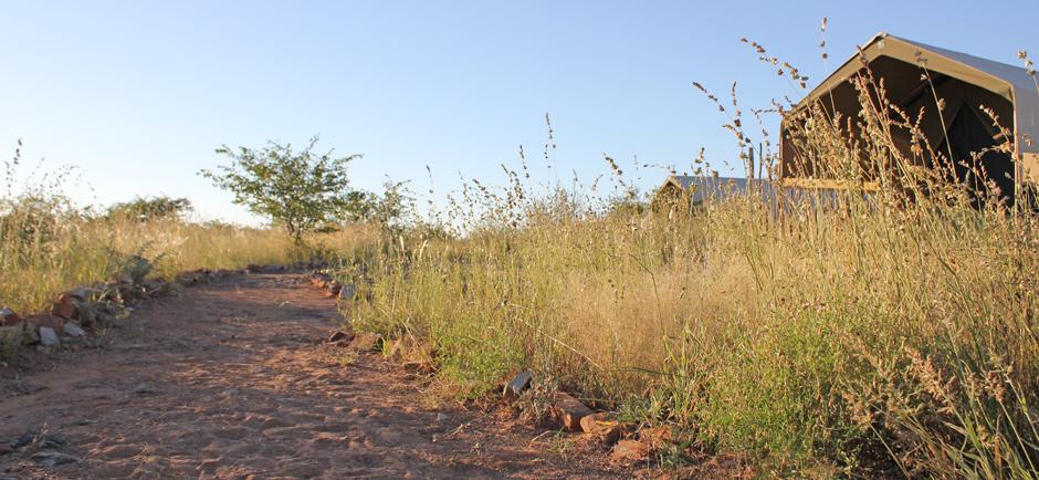 omujeve_safaris_namibia_omatendeka3
